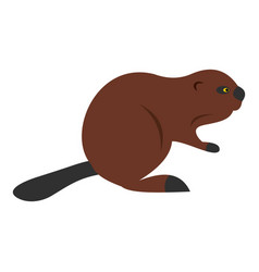 north american beaver icon isolated vector image