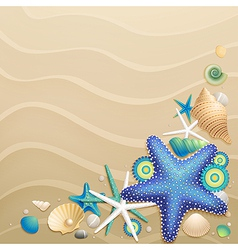 Shells and starfish vector