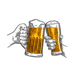 two hands holding and clinking with two beer vector image