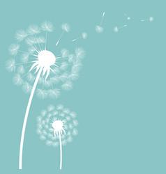 dandelion postcard vector image vector image