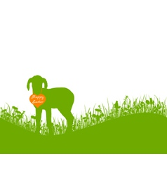 Lamb on meadow vector image vector image