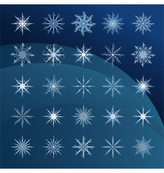 Elegant snowflakes complex pattern vector