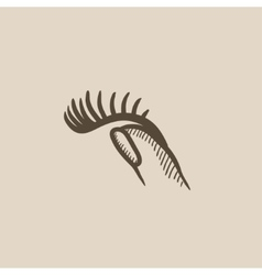 False eyelashes sketch icon vector