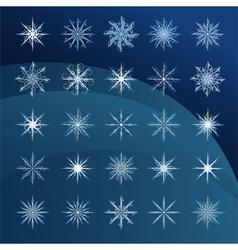 elegant snowflakes complex pattern vector image vector image