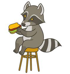 Cute cartoon raccoon holding big tasty sandwich vector