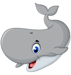 Cute gray whale cartoon smiling vector