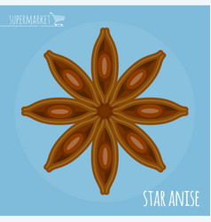 Star anise flat design icon vector