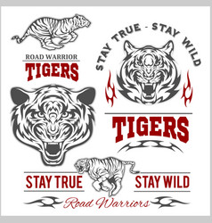 Tigers custom motors club t-shirt logo on vector