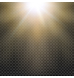 Natural sun yellow light effect sun rays sun vector