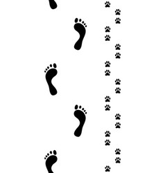feet and dog pawsseamless vector image vector image