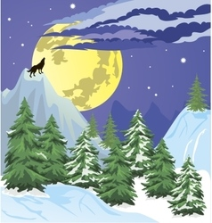 Night winter forest scene vector image