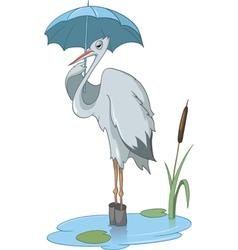 pelican cartoon vector image vector image