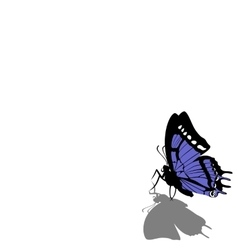 Butterfly on paper 07 vector