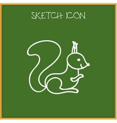 of zoo symbol on squirrel vector image
