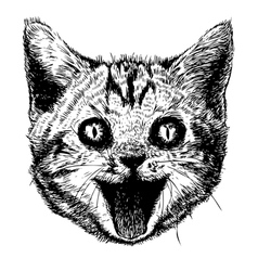 Smiling cat 02 vector