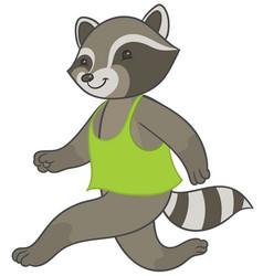 Raccoon running in sports t-shirt vector