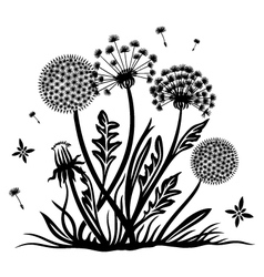 Dandelion meadow spring vector image