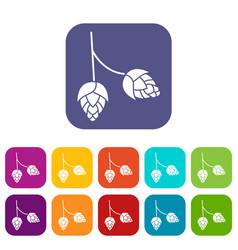 Branch of hops icons set vector