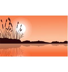 Silhouette of coarse grass on lake landscape vector