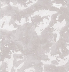 Gray marble texture background vector