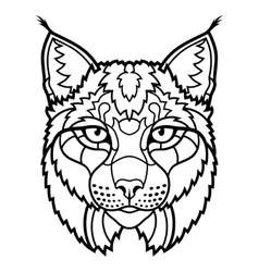 Wildcat lynx mascot head isolated sketch line art vector
