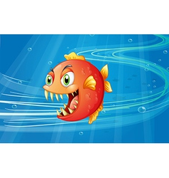 A red piranha under the sea vector image vector image