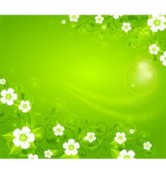 ornament spring floral green vector image