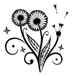 Dandelion flowers spring vector image