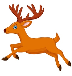 Cartoon deer running vector
