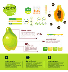 Fresh organic infographics natural fruits growth vector