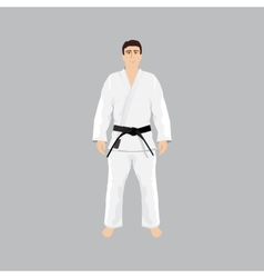 Men in sport wear judo and jiu-jitsu vector