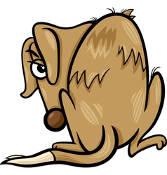 Poor homeless dog cartoon vector