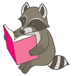 Cartoon raccoon reading a big book vector