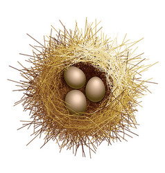 Birds nest with eggs top view vector