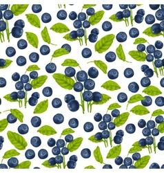 Blueberry seamless pattern vector