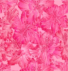 Seamless texture rhododendron pink flower vector