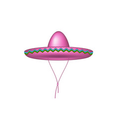 sombrero hat in pink design vector image