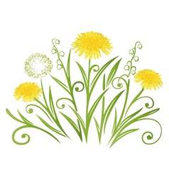 Dandelion meadow spring vector