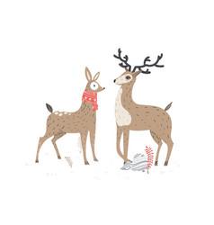 two beautiful deers stylish vector image