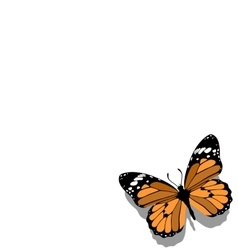 Butterfly on paper 11 vector