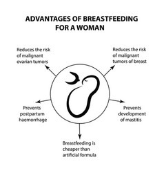 Advantages of breastfeeding for a woman vector