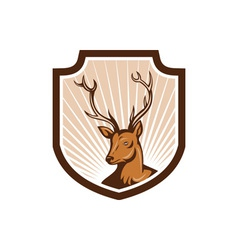 Deer stag buck antler head shield vector