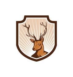 Deer Stag Buck Antler Head Shield vector image vector image