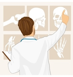 Male doctor pointing on tomography vector
