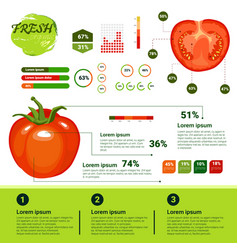 Fresh organic infographics natural vagetables vector
