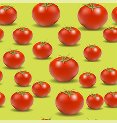 fresh red tomato pattern vector image vector image