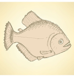 Sketch dangeous piranha in vintage style vector image