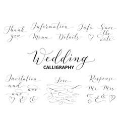 Wedding hand written calligraphy set isolated on vector