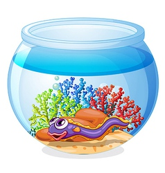 An eel fish inside the aquarium vector