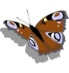 Butterfly on paper 12 vector image vector image